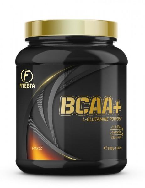 BCAA + Glutamine Powder 500g