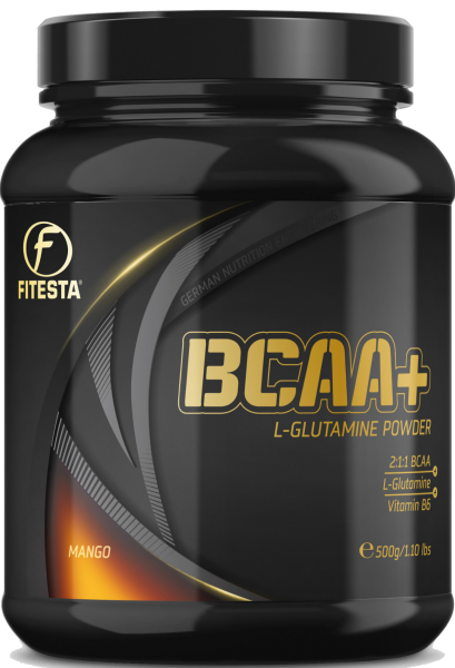 BCAA + Glutamine Powder 500g
