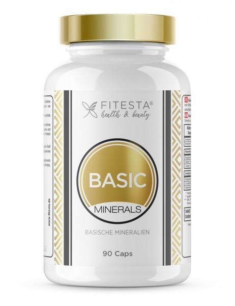 Basic Minerals - 90 Caps